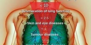 Health risk of particulate matter